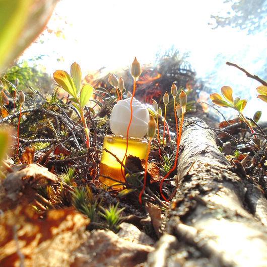 Натуральные духи ручной работы. Ярмарка Мастеров - ручная работа. Купить духи «Приют Одиннадцати». Handmade. Парфюм, натуральная косметика