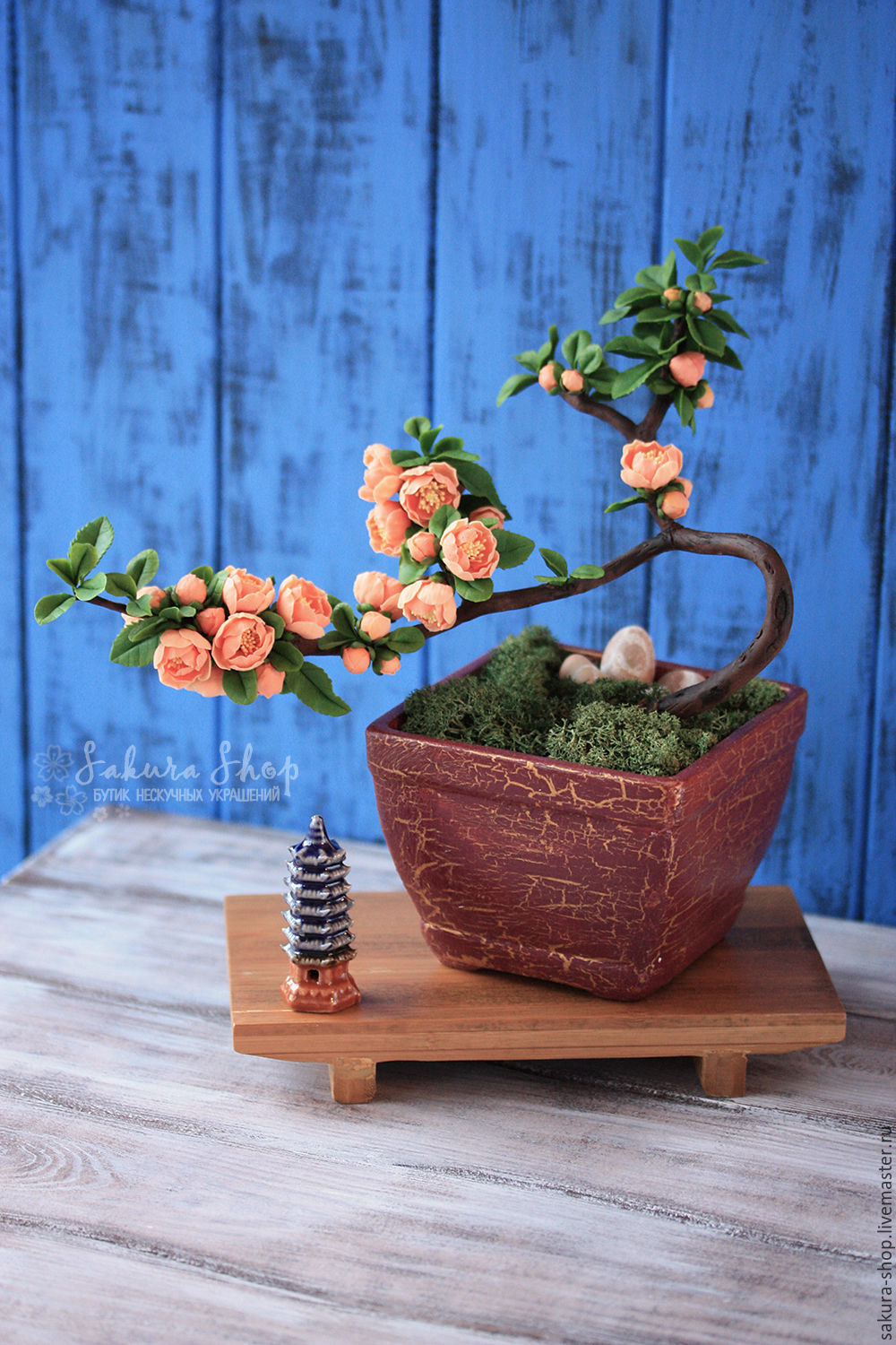 Bonsai Interior Composition With Tree Japanese Quince Cameo Zakazat Na Yarmarke Masterov B0lmxcom Bonsaj Moscow