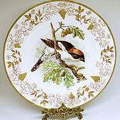 handmade. Livemaster - original item Painted porcelain. Plate