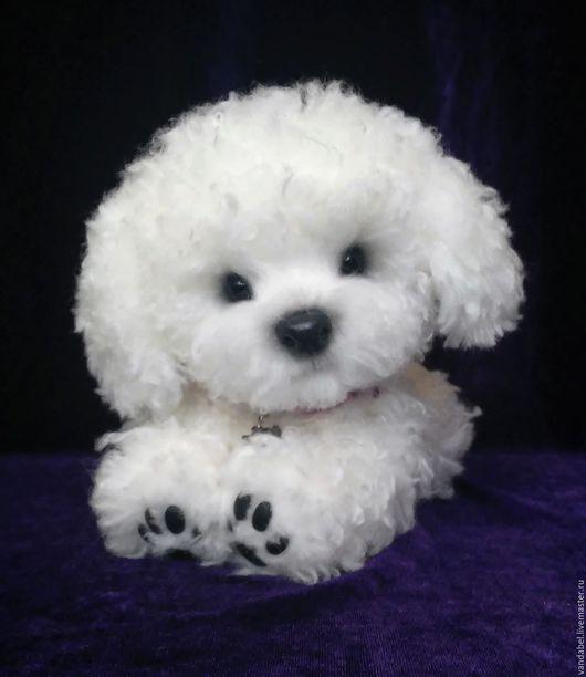 Мишки Тедди ручной работы. Ярмарка Мастеров - ручная работа. Купить Рафаэль, собачка-тедди.. Handmade. Белый, dog