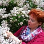 Елена (lifeshine) - Ярмарка Мастеров - ручная работа, handmade
