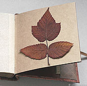 Канцелярские товары handmade. Livemaster - original item Square mini-album for a herbarium a wild Rose (for 20 plants). Handmade.