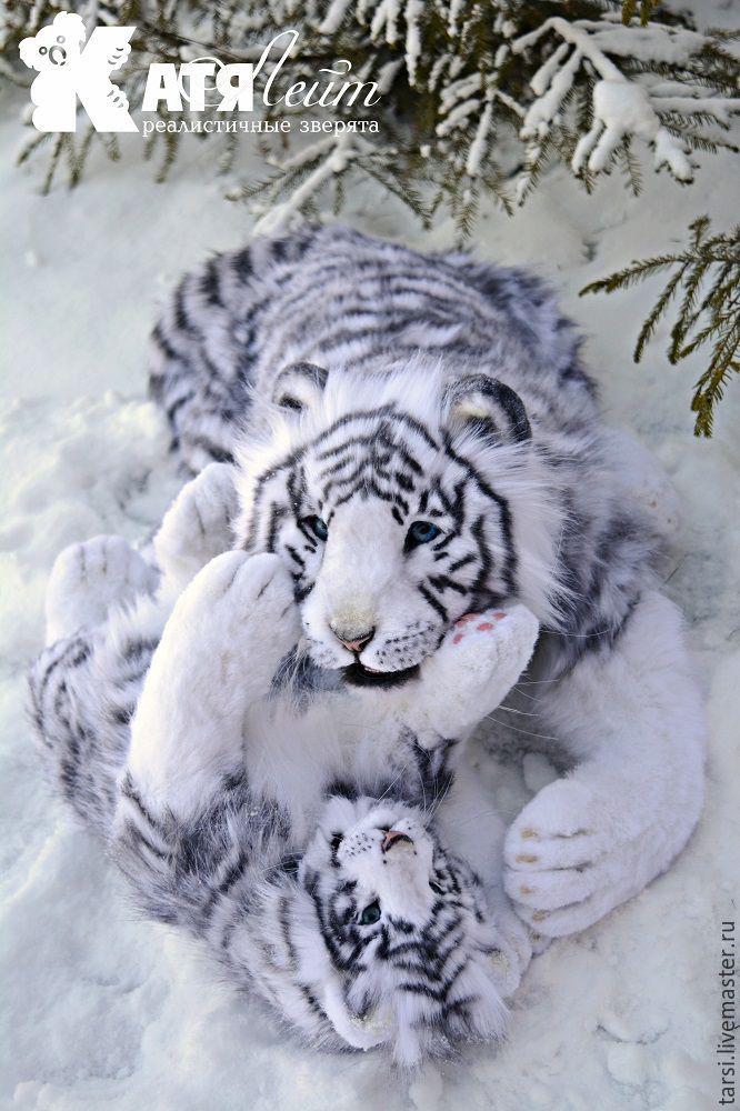 чёрно белые тигры картинки