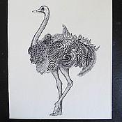 Pictures handmade. Livemaster - original item Ink painting Ostrich. Handmade.