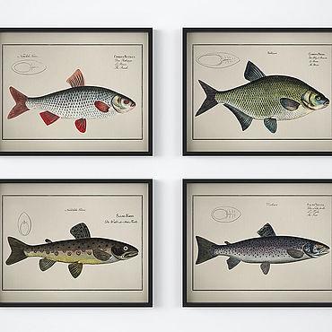 Картины и панно ручной работы. Ярмарка Мастеров - ручная работа Набор винтажных плакатов с видами рыб для украшения интерьера. Handmade.