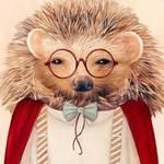 Сладкий ежик | Sweet hedgehog - Ярмарка Мастеров - ручная работа, handmade