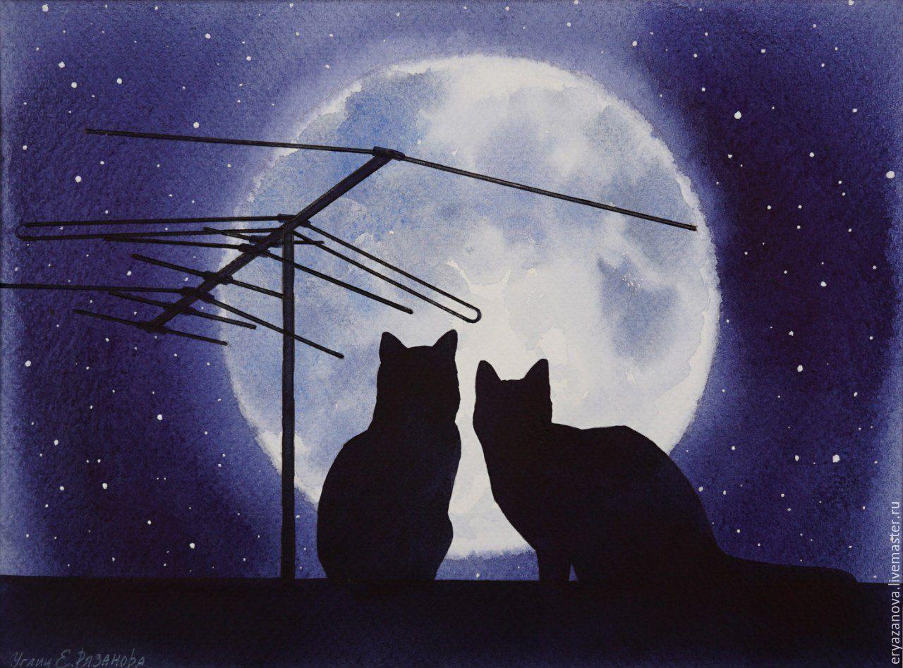 Кошки на крыше картинки рисунок