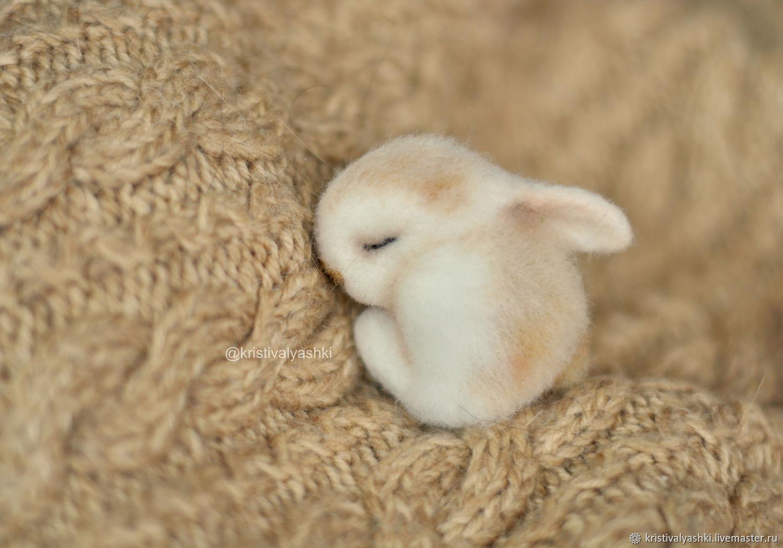 Felted brooch sleeping Bunny, Brooches, Severodvinsk,  Фото №1