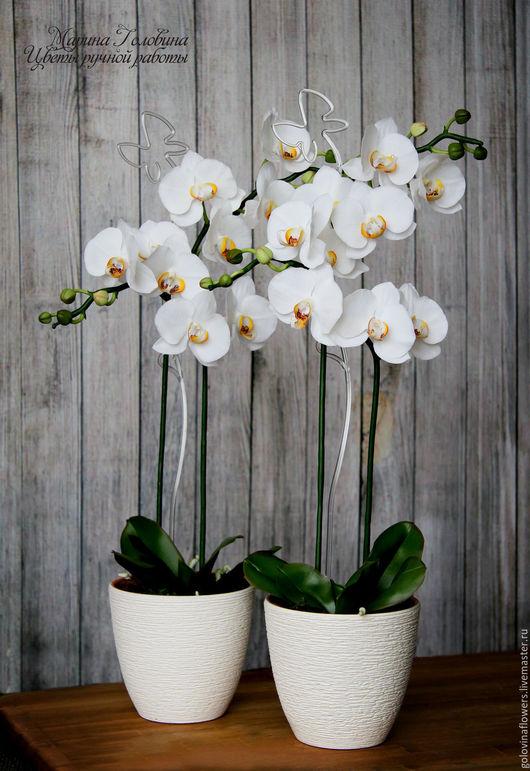 Интерьерные композиции ручной работы. Ярмарка Мастеров - ручная работа. Купить Белоснежная орхидея  из полимерной глины. Handmade. Орхидея, выпускной
