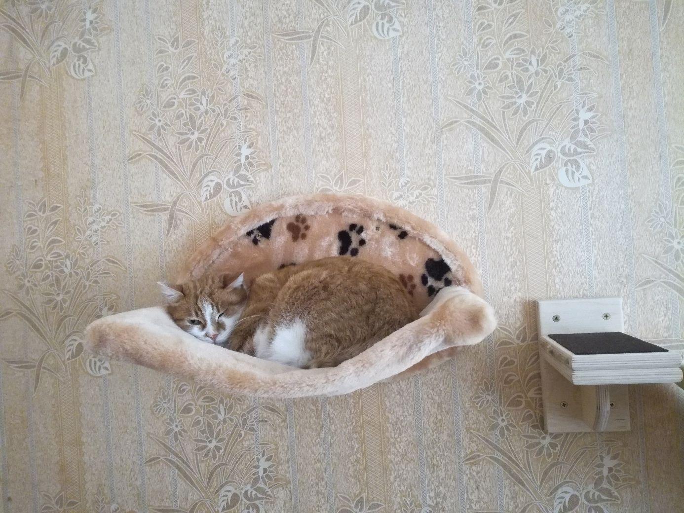 Гамак для кошек с подвесным мостиком, Гамак для питомца, Тула,  Фото №1