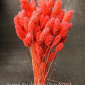 Цветы ручной работы. Ярмарка Мастеров - ручная работа Фалярис розовый 100 колосков. Handmade.