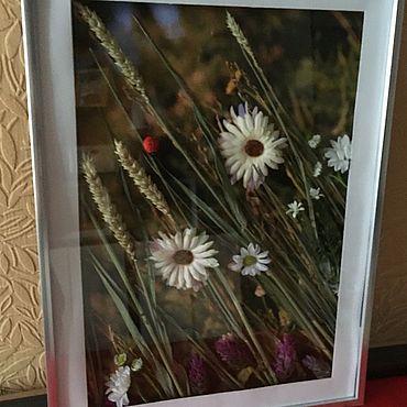 Картины и панно ручной работы. Ярмарка Мастеров - ручная работа Фотокартины: Ромашки полевые. Handmade.