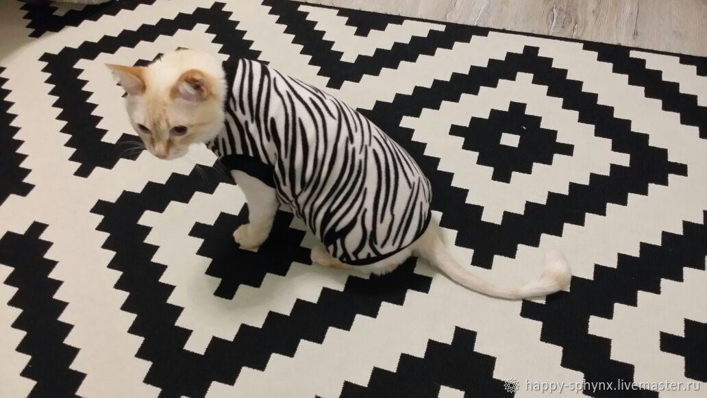 """Одежда для кошек """"Зебра"""", Одежда для питомцев, Бийск,  Фото №1"""
