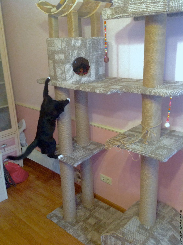 Домики для кошек и котят - купить, цены в интернет