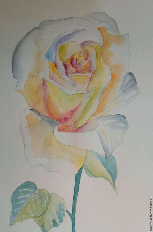Картины цветов ручной работы. Ярмарка Мастеров - ручная работа. Купить Белая роза. Handmade. Комбинированный, акварель, рисунок, картина