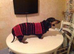 """Одежда для собак, ручной работы. Ярмарка Мастеров - ручная работа. Купить Комбинезон для таксы """"ЛЯЛЯ"""". Handmade. Одежда для собак"""