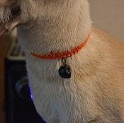 Для домашних животных, handmade. Livemaster - original item Collar for cat. Handmade.