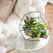 Флорариумы ручной работы. Ярмарка Мастеров - ручная работа Флорариум усеченный октаэдр. Handmade.
