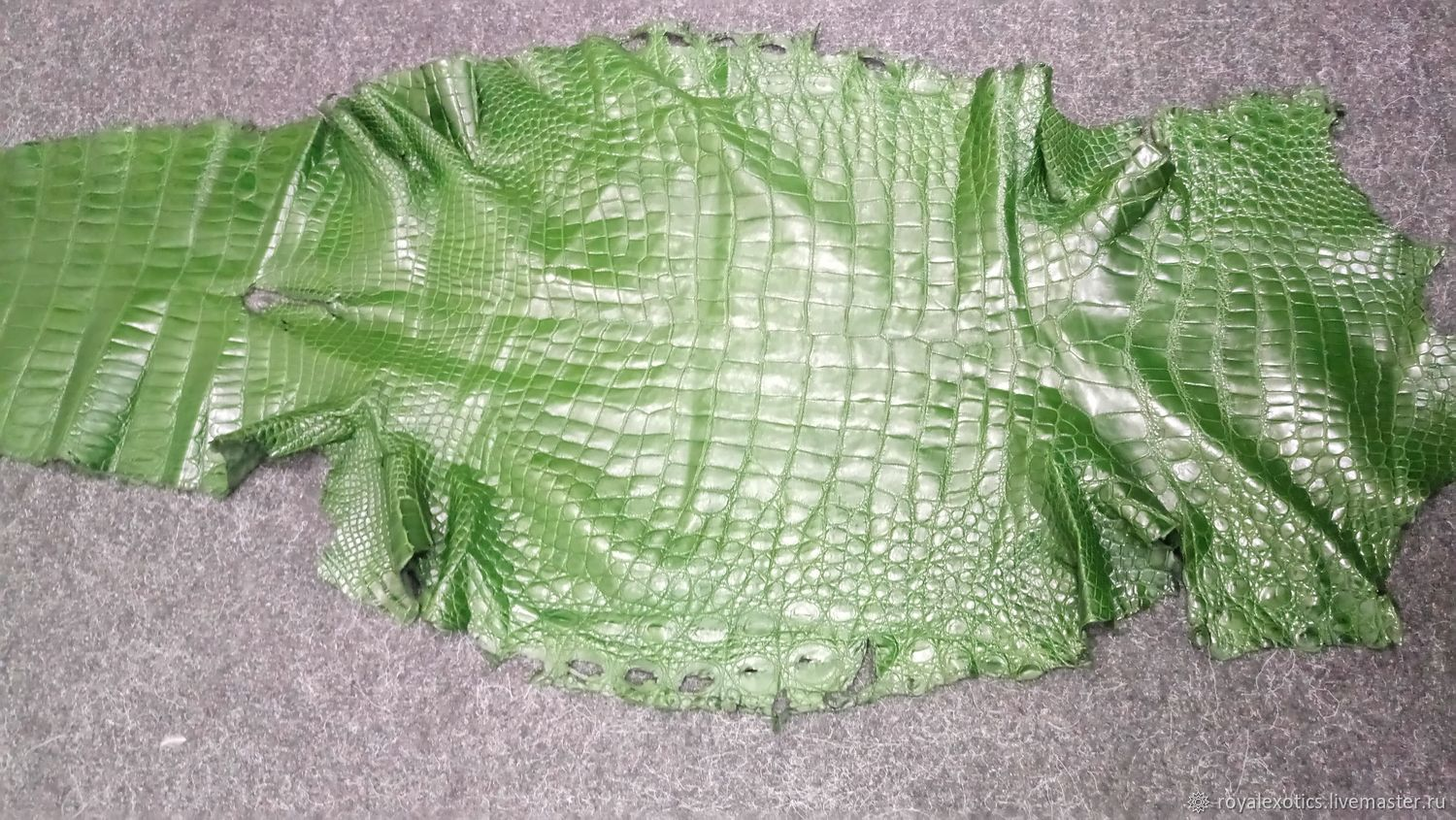 Crocodile skin, in green, clothing dressing, Leather, Tosno,  Фото №1