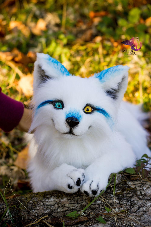 Realistic wolf. Author toy, Stuffed Toys, Sochi,  Фото №1