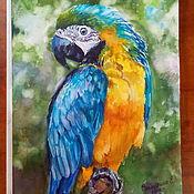 Картины и панно handmade. Livemaster - original item Watercolor painting Parrot. Handmade.