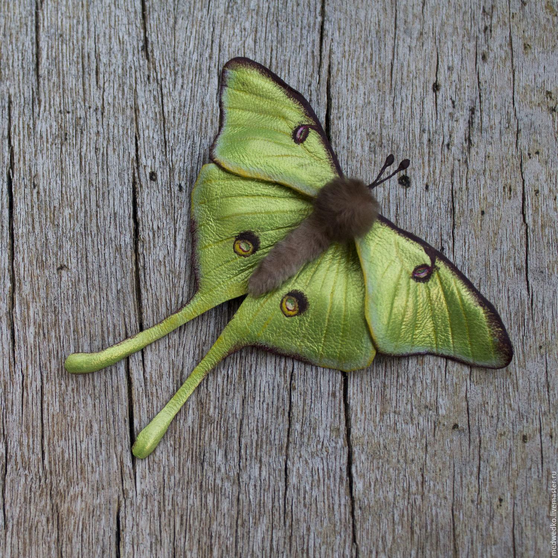 Brooch leather Butterfly Saturnia Luna, Brooches, Vidnoye,  Фото №1