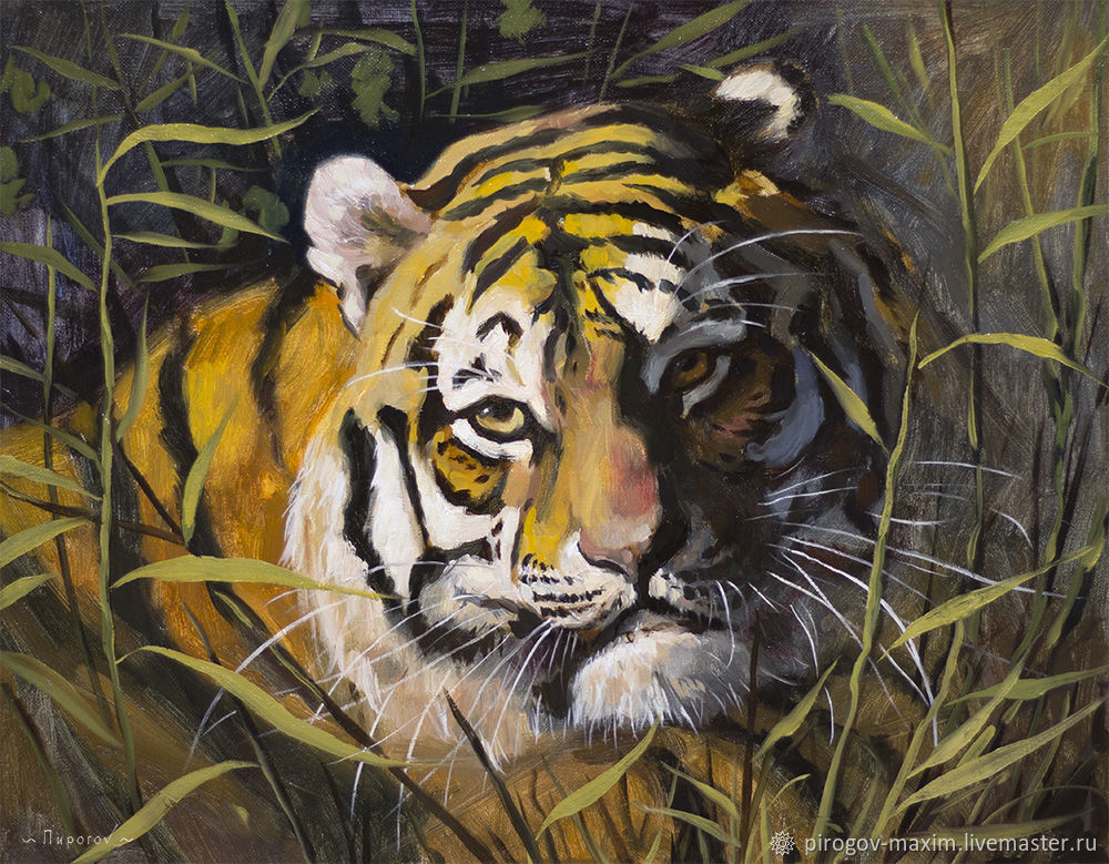 Oil painting tiger. Picture. Tiger oil. Cats cat. Painting, Pictures, Samara,  Фото №1