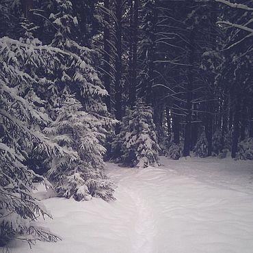 Дизайн и реклама ручной работы. Ярмарка Мастеров - ручная работа Фото: прекрасная зима. Handmade.