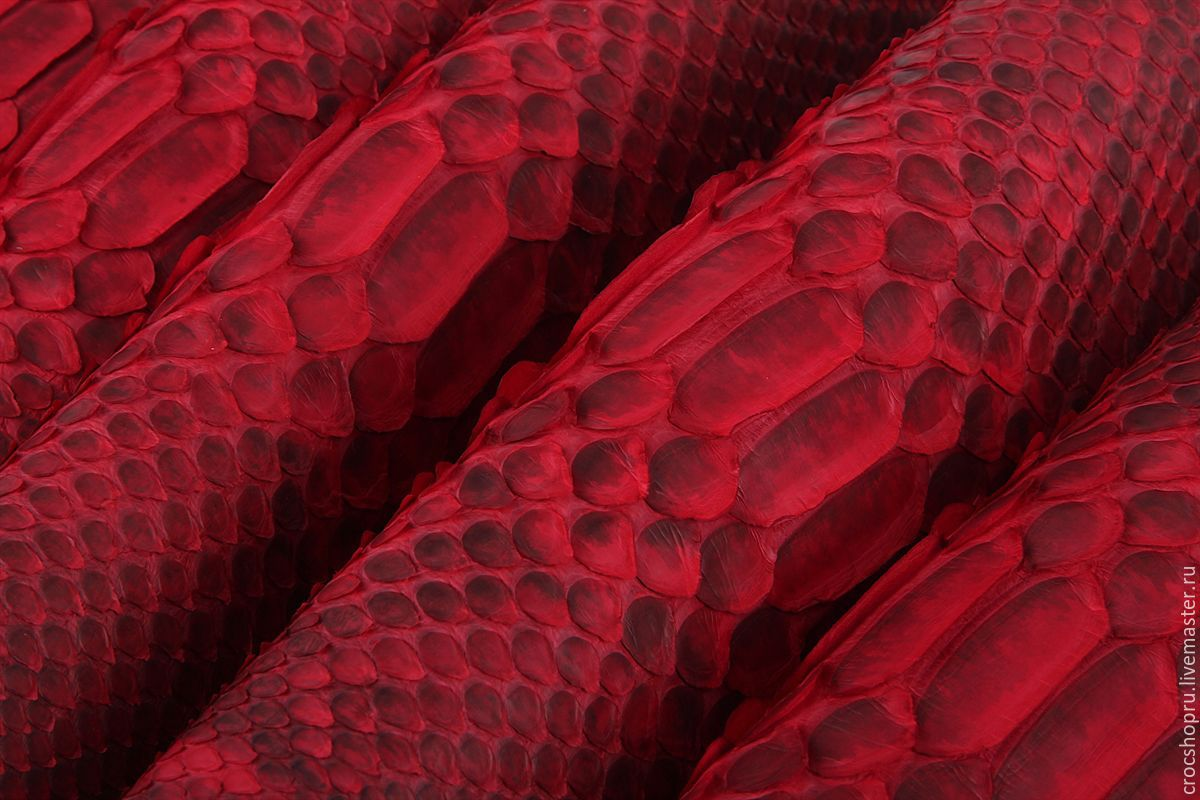 Python skin natural in stock, Leather, Moscow,  Фото №1