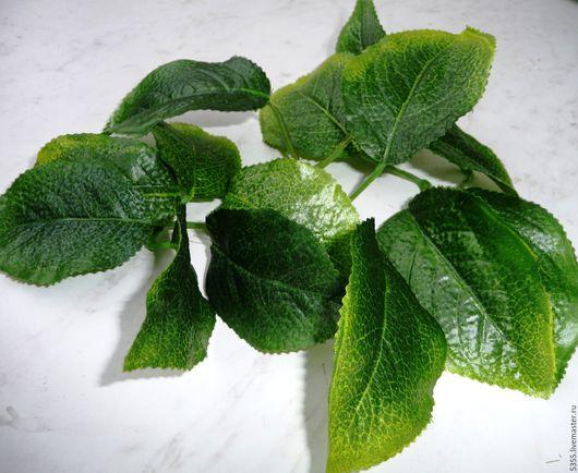 Листья в наборе. Яркие  и сочные листочки Набор из 16 листочков. Купить листья. Палочка-выручалочка.