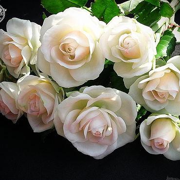 Цветы и флористика ручной работы. Ярмарка Мастеров - ручная работа Белые розы из полимерной глины. Handmade.