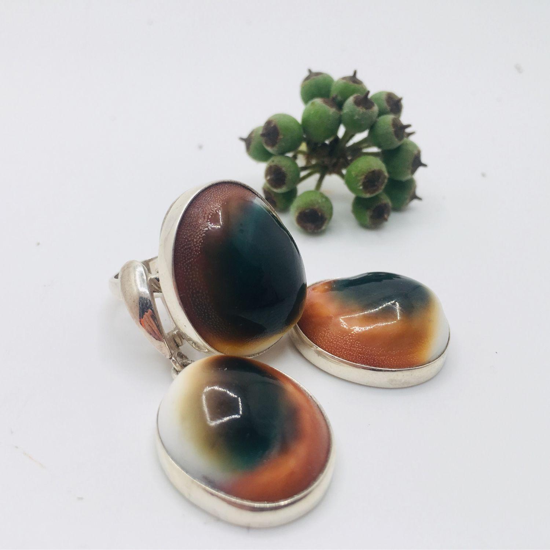 Set with shells, Jewelry Sets, Feodosia,  Фото №1