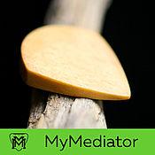 Музыкальные инструменты handmade. Livemaster - original item The mediator from the wood of hornbeam Jazzwood. Handmade.