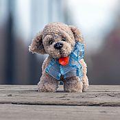 Куклы и игрушки handmade. Livemaster - original item Toy crochet beige puppy Riru. Handmade.