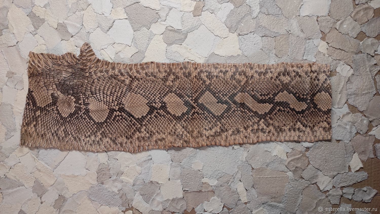 A piece of exotic luxury snake skin, Leather, Moscow,  Фото №1