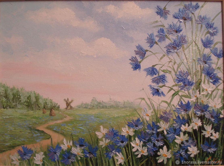 cornflowers, Pictures, Chelyabinsk,  Фото №1