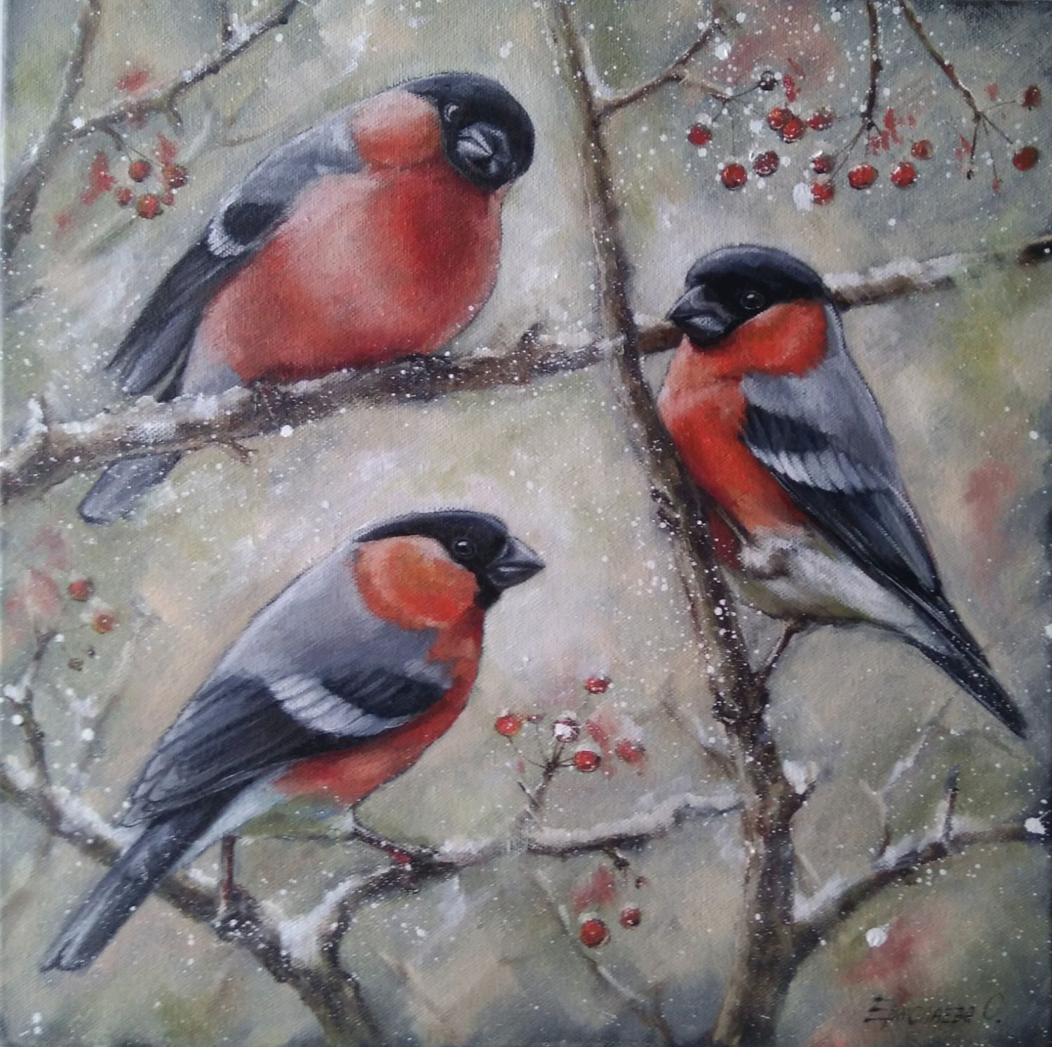 Oil painting with bullfinches Bright trio, Pictures, Zhitomir,  Фото №1