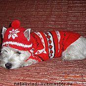 Для домашних животных, ручной работы. Ярмарка Мастеров - ручная работа Красная шапочка. Handmade.