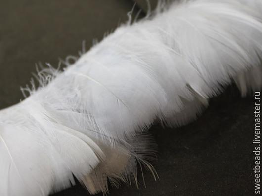 Другие виды рукоделия ручной работы. Ярмарка Мастеров - ручная работа. Купить Перья гусиные, белые. Handmade. Перья