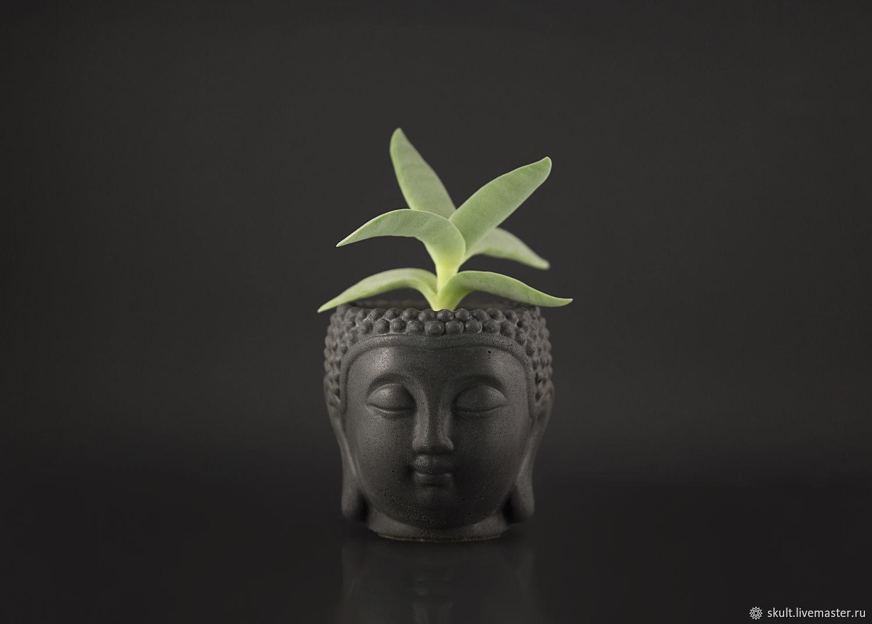 Planters made of concrete 'Buddha', Pots1, St. Petersburg,  Фото №1
