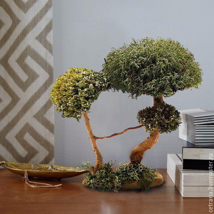 Подарок на свадьбу - натуральное дерево из цетрарии, Подарки для влюбленных, Москва, Фото №1