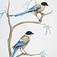 Голубые сороки.  Серия Сороки, акварель, размер А4 (21х30 см), Светлана Маркина, LechuzaS