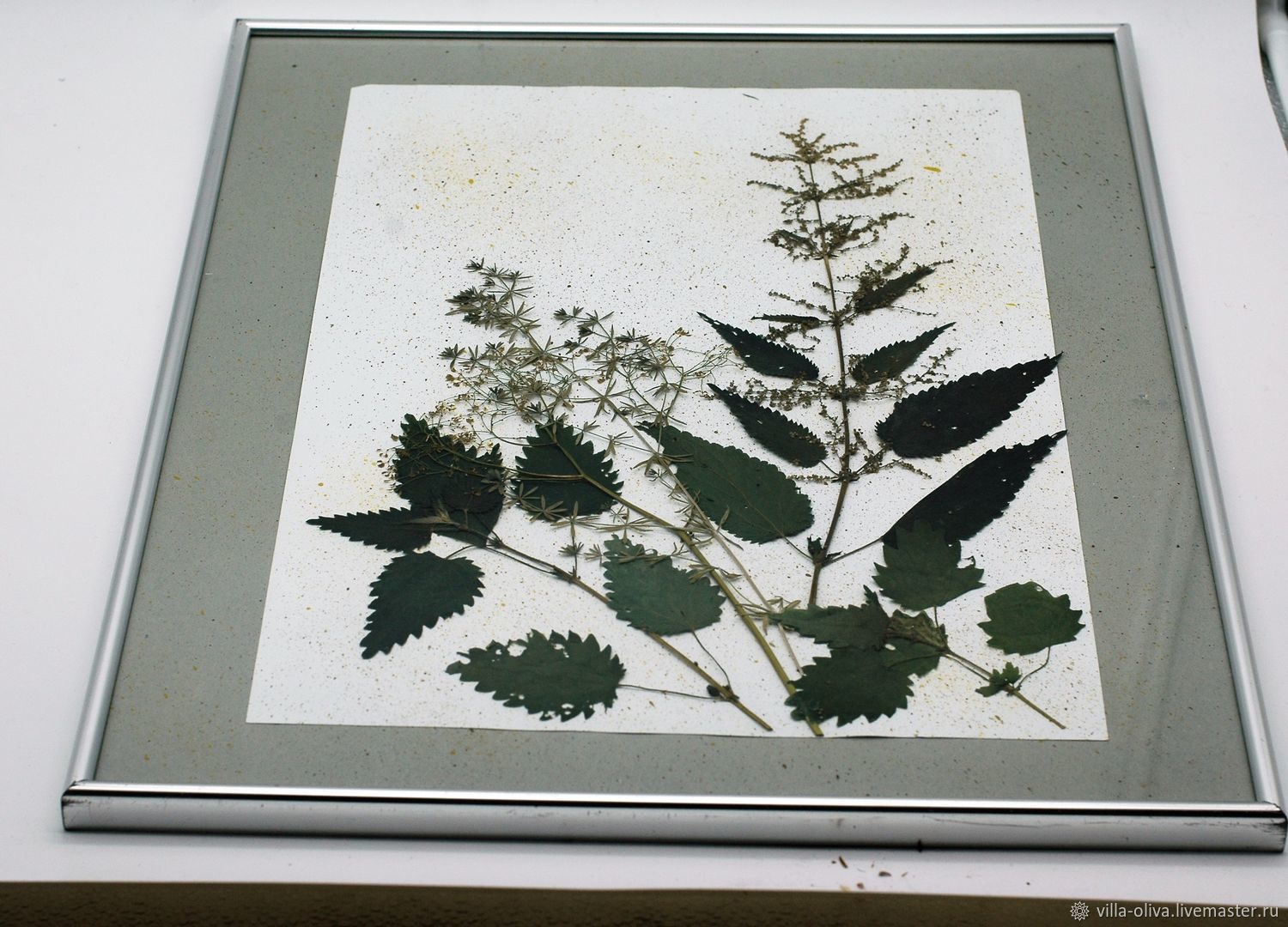Flower Paintings handmade. Herbarium in a vintage picture frame dried flowers and metal frame.