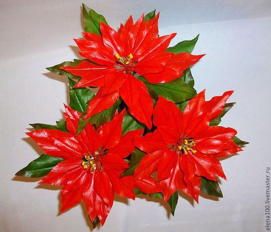 Цветы ручной работы. Ярмарка Мастеров - ручная работа. Купить Пуансетия или Рождественская звезда. Handmade. Ярко-красный, для дома