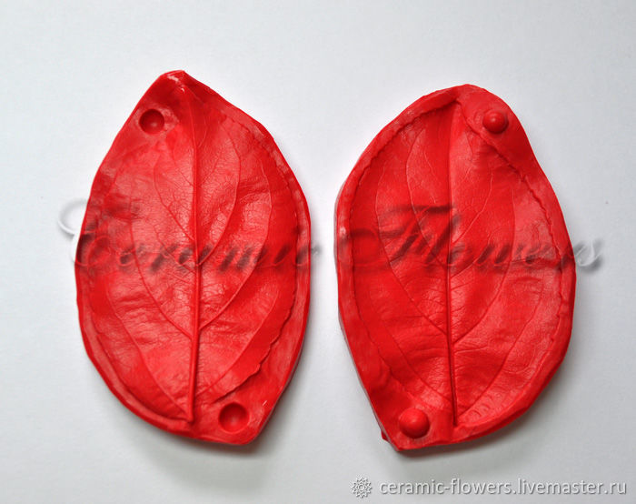 Silicone mold (Weiner) leaf, Apple, bilateral, Molds for making flowers, Rostov-on-Don,  Фото №1