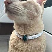 Зоотовары handmade. Livemaster - original item Collar for cats, collar for dogs. Handmade.