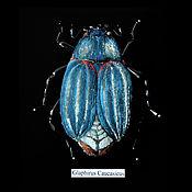 Украшения handmade. Livemaster - original item Brooch beetle Glaphirus. Handmade.
