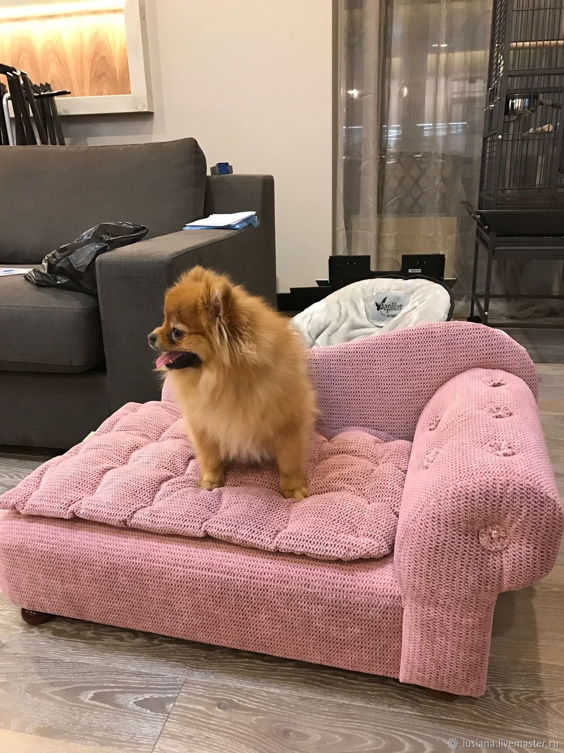 Couch for dog or cat buy. Sofa for dogs order, Accessories for Pets, Ekaterinburg,  Фото №1