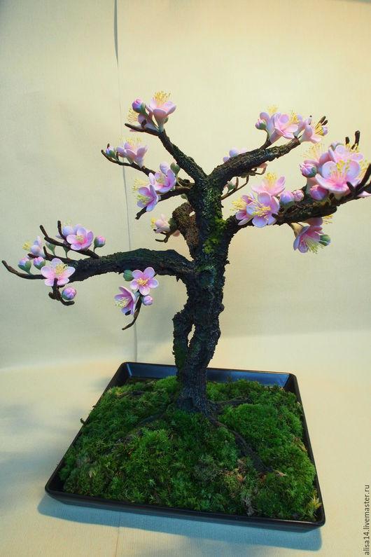 Цветы ручной работы. Ярмарка Мастеров - ручная работа. Купить Бонсай- цветущая сакура. Handmade. Бонсай, полимерная глина