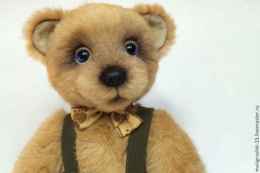 Мишки Тедди ручной работы. Ярмарка Мастеров - ручная работа. Купить Гоша. Handmade. Коричневый, подарок, пластик